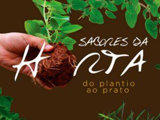 Livro gratuito ensina plantar e desidratar tempero