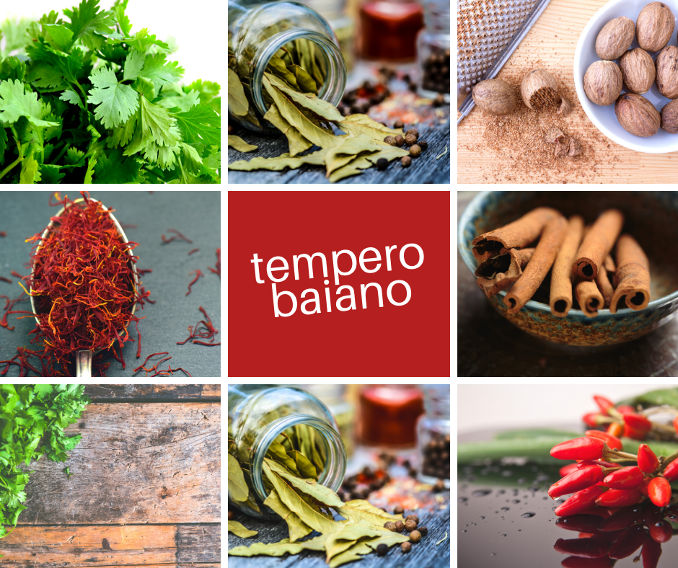 5 temperos de sucesso - Tempero Baiano